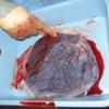 Co se děje s placentou