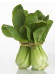 listova-zelenina-femibion