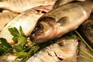 Ryby působí blahodárně na mozek i na srdce.